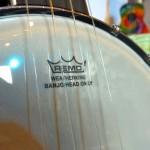 Richwood Banjolele