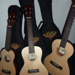 Kala travel ukes in spruce